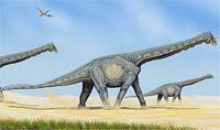 alamozaur szkic graficzny