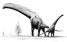 brachiozaury giraffatitan