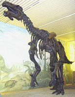 iguanodon szkielet