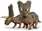 pentaceratopsy