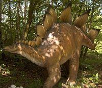 reprodukcja Stegozaura
