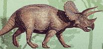 triceratops dinozaur