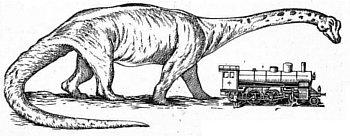 wielkość dinozaurów